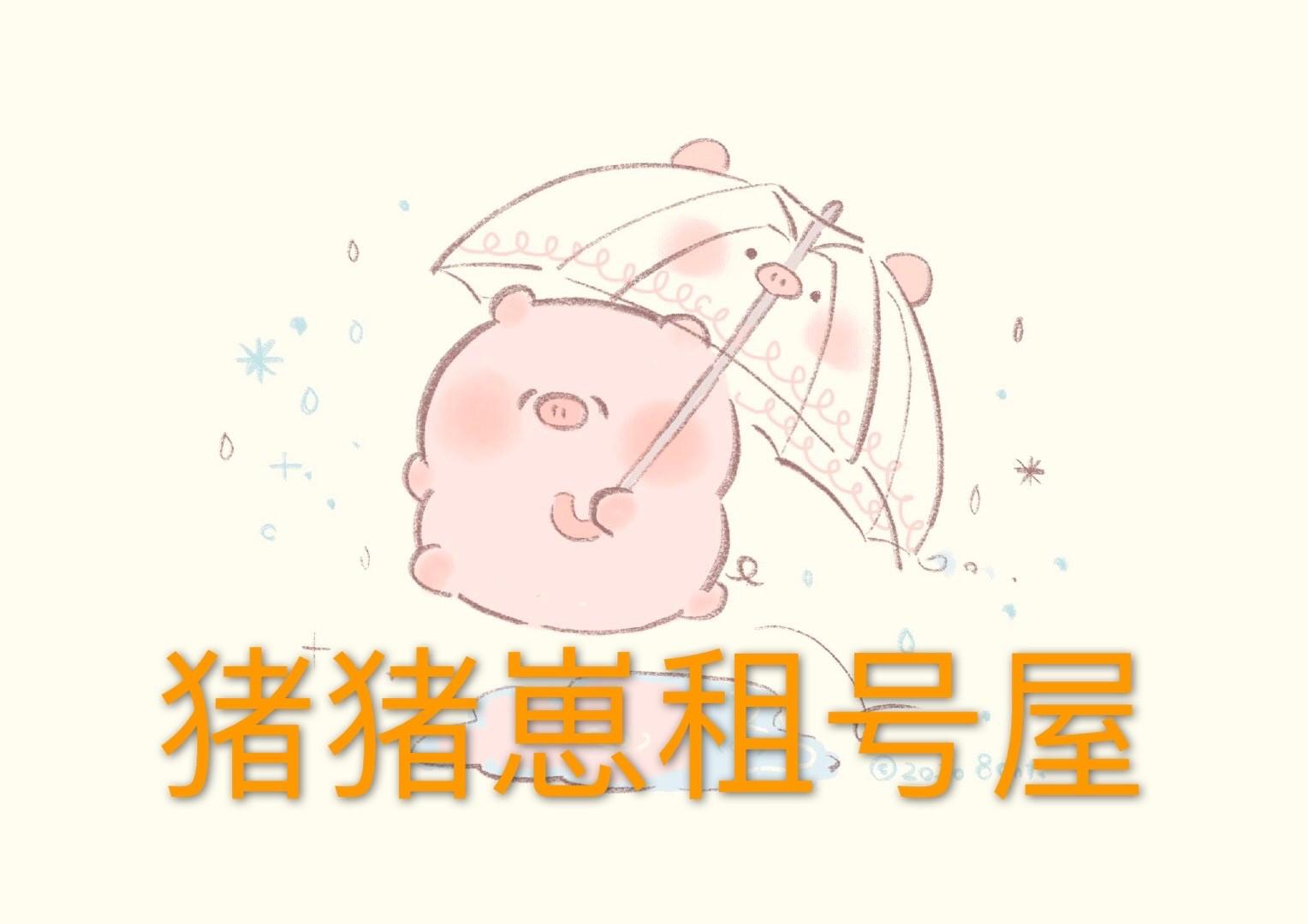 猪猪崽租号小屋