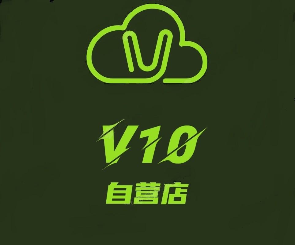 王者V10自营店